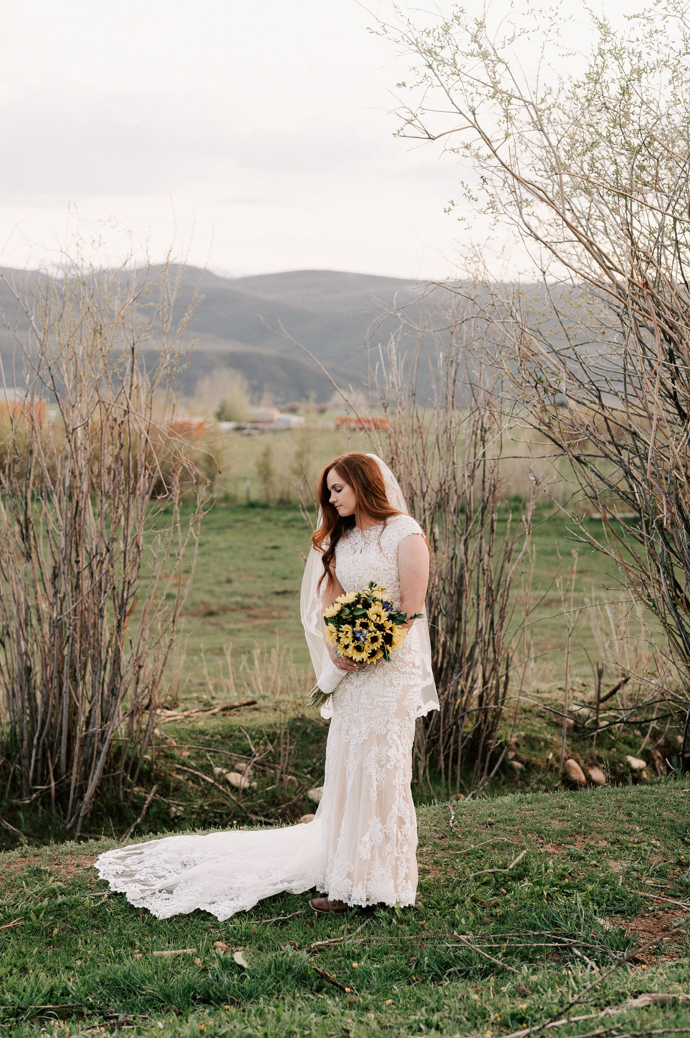 Sunflower Wedding Bouquet Classic Dress Horse Ranch Tew Treasures Photography 1