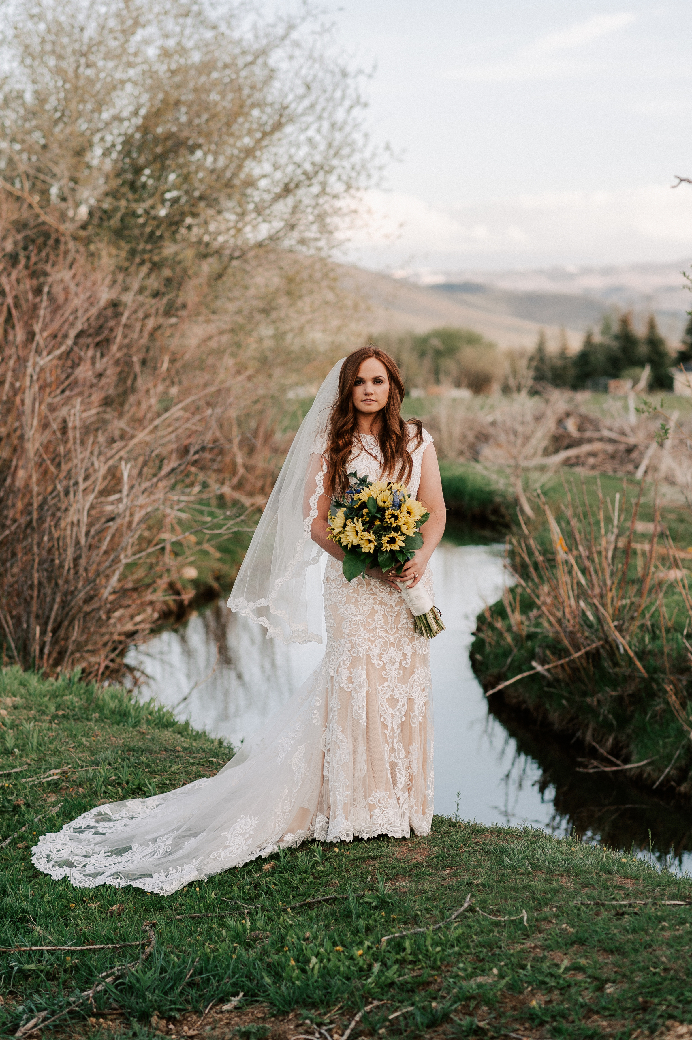 Sunflower Wedding Bouquet Classic Dress Horse Ranch Tew Treasures Photography 2