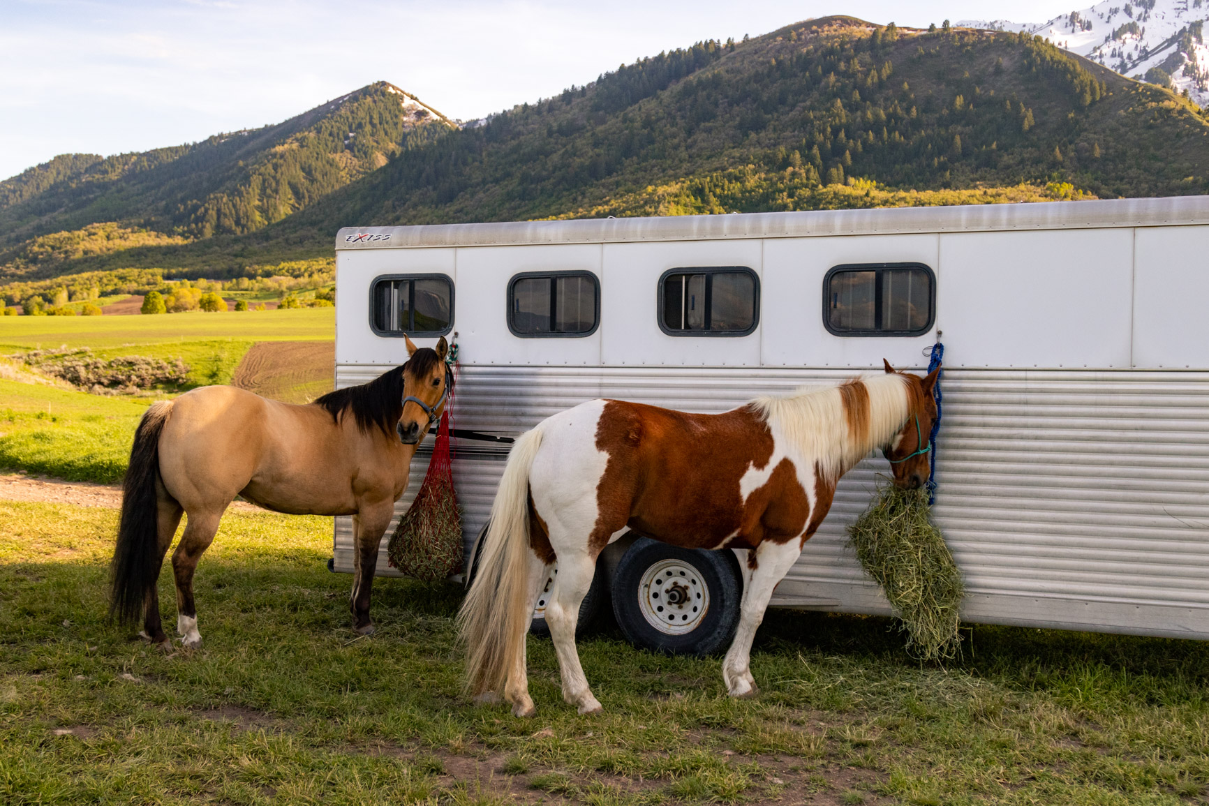 Bridal Suite Horse Trailer Rustic Elopement Wasatch Mountains Rocky Mountains Utah Halie West Photography 1