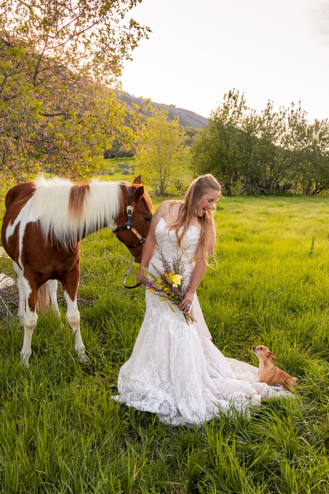Rustic Wild Wedding Bouquet Elopement Rocky Mountains Wasatch Mountains Utah Halie West Photography 4