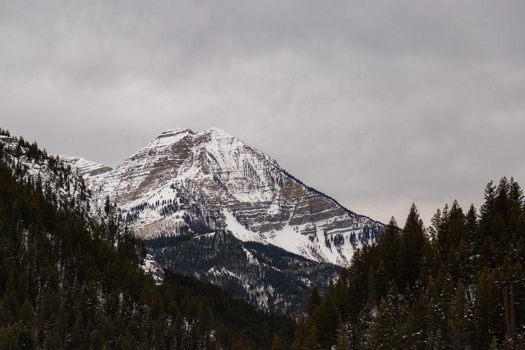Snowy Winter Wasatch Mountains Utah Elopment Halie West Photography 1