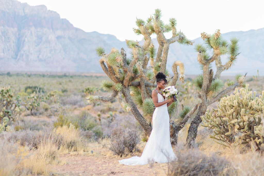 Edgy Romantic Wedding Red Rock Canyon Las Vegas Bride Elizabeth Burgi Photography 6